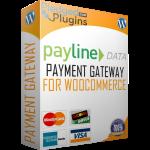 box-payline-data